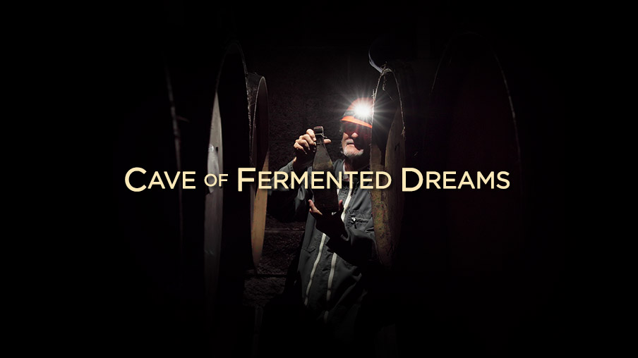 Cave of Fermented Dreams